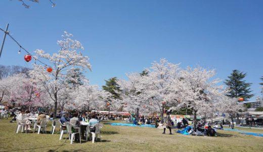 【2019年】仙台市大町 西公園の桜